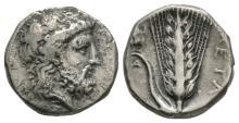Ancient Greek Coins - Lucania - Metapontum - Zeus Nomos