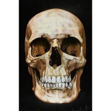 Damien Hirst, (British, b. 1965), Skull Beneath the Skin, 2005, color silkscreen with diamond dust, 59
