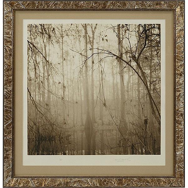 David Halliday (American, b. 1958) Abstract Nature