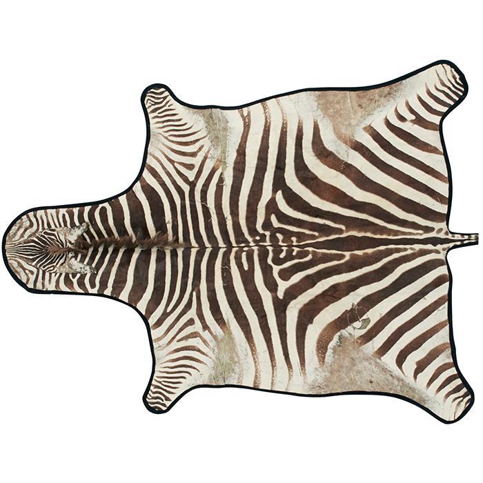 Burchell''s Zebra rug 68