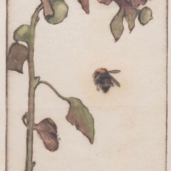 Bertha Jaques hand-colored etching