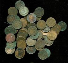 Lot of (50) Indian Head Cents -
