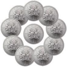 (10) Random Date Canadian Silver Maple Leaf's