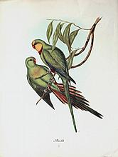 1937 lithograph