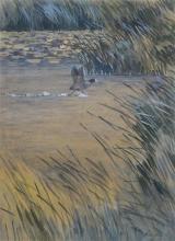 Jo Schrijnder (1894-1968) - krijt en aquarel op papier, 37 x 26,5, Opvliegende meerkoet boven het