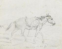Grashof, Otto1812 Prenzlau - 1876 KölnMaultier.