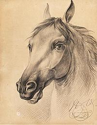 Grashof, Otto 1812 Prenzlau - 1876 Cologne Horse