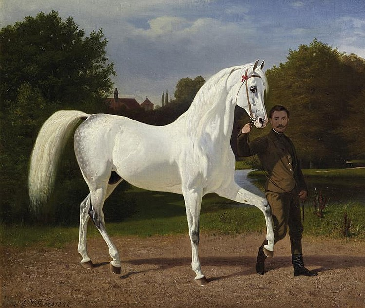 Rider leads his noble horse.
