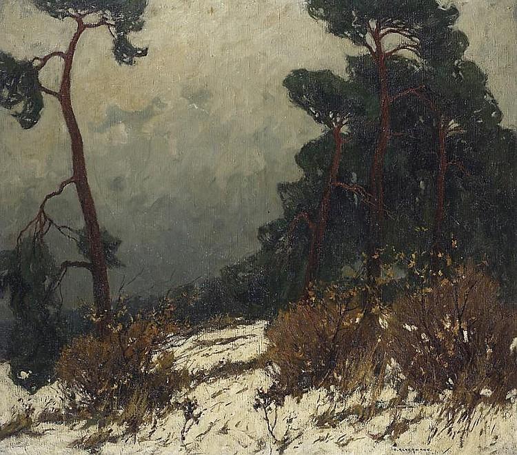 Winter in the Mecklenburg dunes.