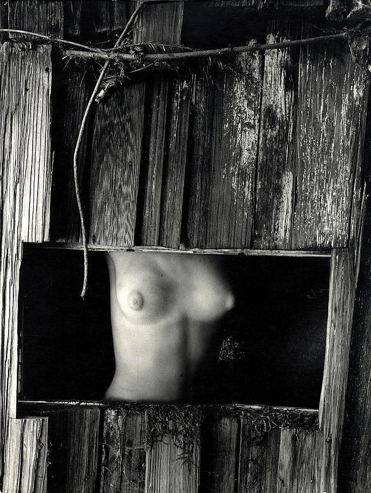Bullock, Wynn1902 Chicago (Il) - 1975 Monterey (CA)Nude in Barn Window. Vor 1956. Vintage. Gelatinesilberabzug. Hartfaserplatte. 38 x 29cm Zollstmpel auf der Plattenrückseite. Bildecken und -kanten deutlich bestoßen. Linerare Druckspur im rechten