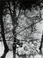 Rohde, Werner1906 Bremen - 1990 WorpswedeParis. 1929. Vintage. Gelatinesilberabzug. Passepartout. 15,9 x 11,9cm Rückseitig mit Bleistift betitelt und datiert. In der oberen rechten Ecke kleiner Riss. Ansonsten tadelloser Zustand. Provenienz: