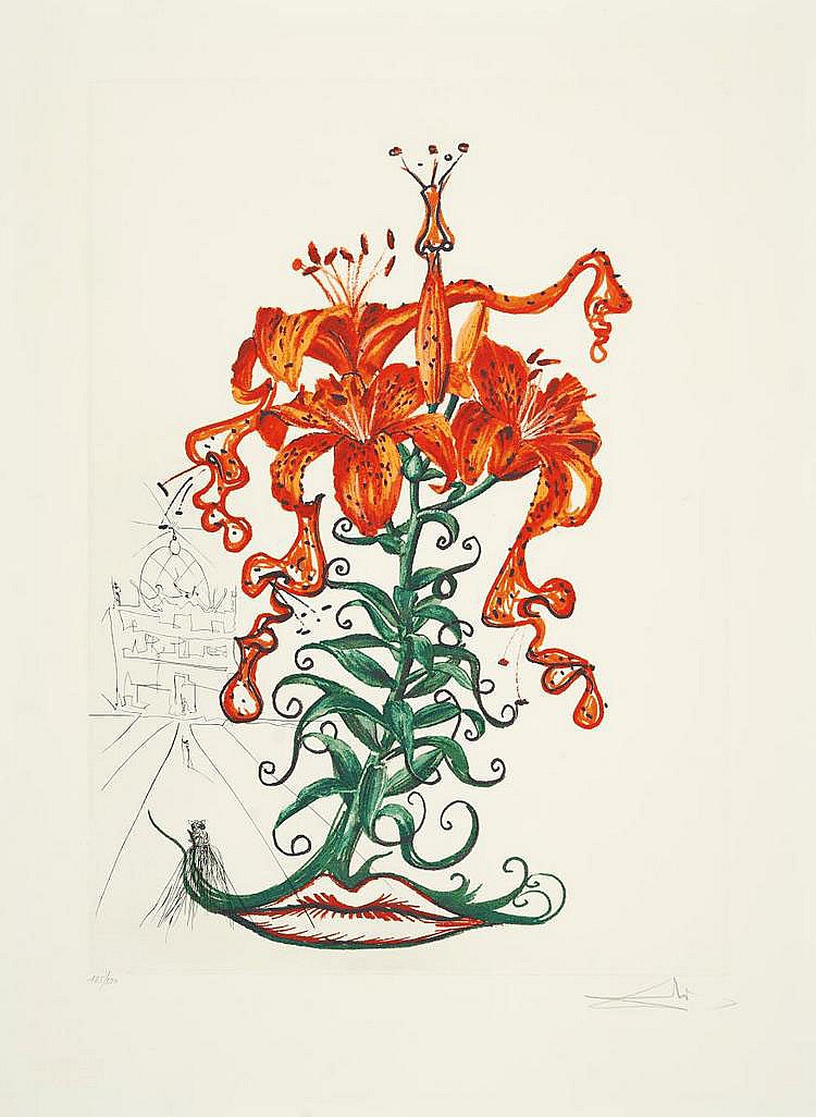 Dalí, Salvador 1904 - 1989 Figueras/Spain Lilium