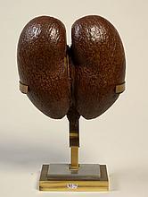 """KREKELS Christian (1942) - """"Coco-fesse"""" sur une monture en bronze doré. Attribué à"""