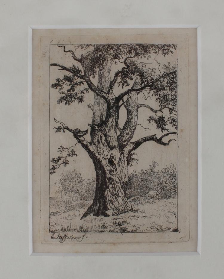 Steffelaar, Cornelis (1997-1861)