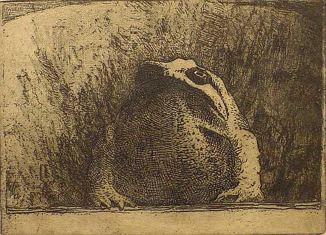 Nachenius, J.C. (1890-1987), etching, The toad,