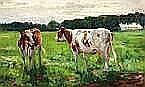 Dirk Johannes van Haaren (1878-1953) Jonge koeien