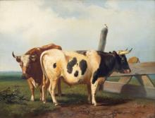 Pieter Plas (1810-1853)