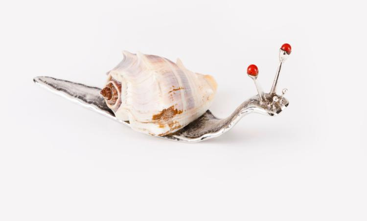 Snail, LUIZ FERREIRA