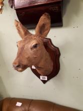 Taxidermy deer's head mounted on an oak plaque.