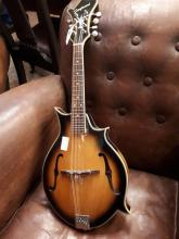 Tanglewood F Style mandolin.