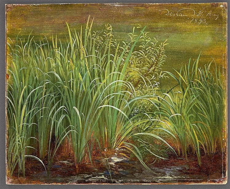 Karl Christian Sparmann, The Banks of a Lake, with Reeds