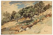 Landschaft bei Olevano