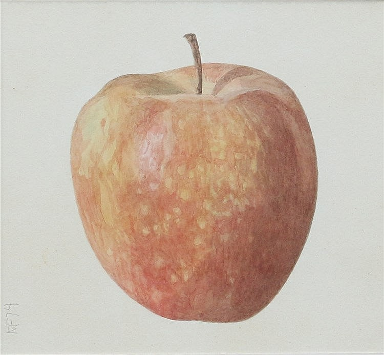 Kees Franse (1924-1982) An apple. Signed with the initials and da