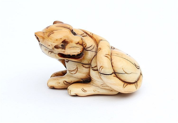 A Japanese ivory netsuke carved as a crouching tiger.19th centur