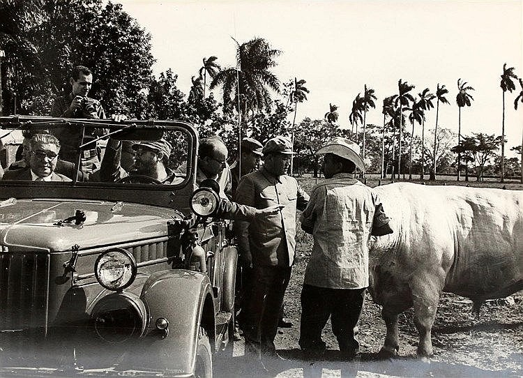 Photograph of a Chinese dignitary visiting an agricultural site