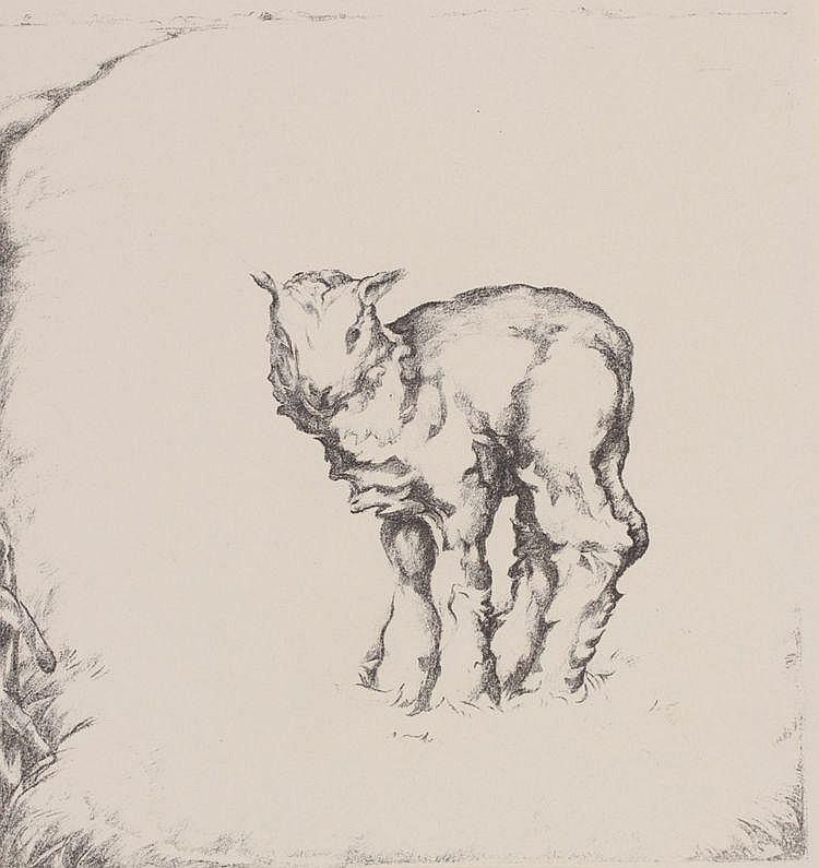 Kees van Urk (1895-1976) Lammetje. Niet