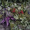 April Hickox (1955- ), COMPOST - RED PETAL, 2010, Colour chromogenic print; titled, dated 2010 and numbered 2/7 to  gallery label verso, Sheet 33