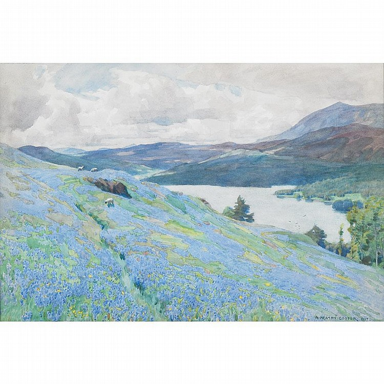 Alfred Heaton Cooper (1864-1929), British. SHEEP GRAZING ON A SPRING HILLSIDE WITH BLUEBELLS