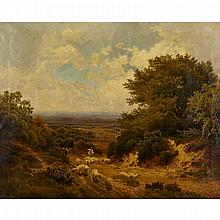 John Clayton Adams (1840-1906), THE HEATH OF SURREY, Oil on canvas; signed and dated 1878 lower left, 40.5