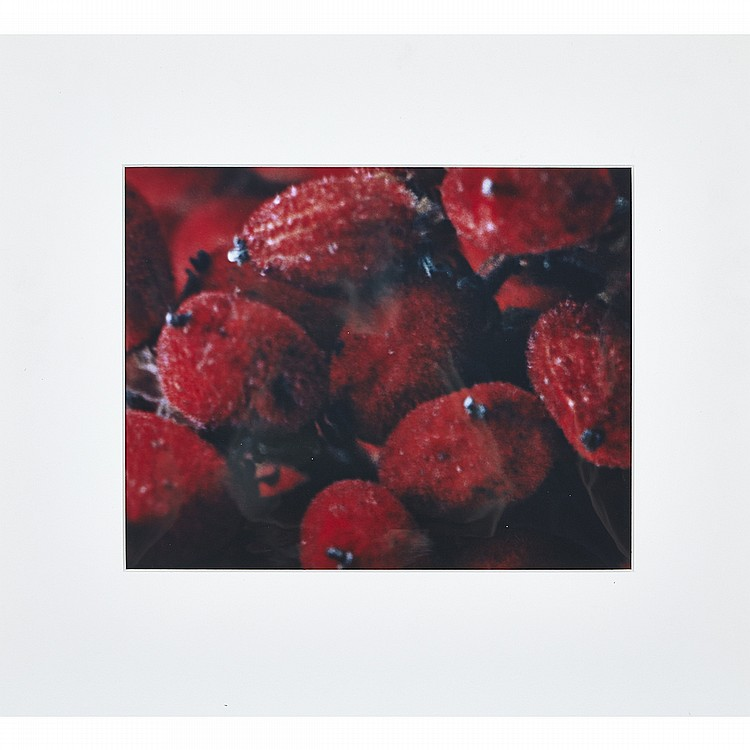 Mark Brickell (20th Century), TWO UNTITLED PRINTS: (RED FRUIT), CIRCA 1977; (PERRIER MINERAL WATER BOTTLE), 1992, The first a cibachrome print; annotated, dated