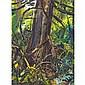 ARTHUR LISMER, O.S.A., R.C.A., REDWOOD, oil on panel, 16 ins x 12 ins; 40 cms x 30 cms