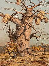 Otto Klar (South African 1908-1994) BAOBAB TREE signed oil on board 59,5 by
