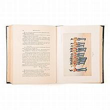 Barrett, C. R. B. (Editor) THE 85TH KINGS LIGHT INFANTRY London: Spottiswoo