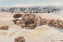 Ulrich Konrad Heinrich Schwanecke (South African 1932-2007) DESERT ROCKS si
