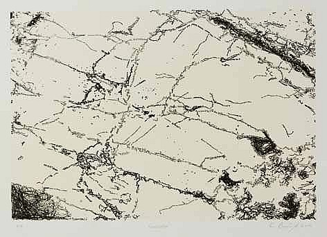 Willem Boshoff (South African 1951-) FORMICATION lithograph, signed, dated