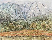 Edward Wolfe (South African 1897-1982) NAMAQUALAND VISTA signed oil on boar