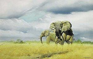 Craig Bone (Zimbabwean, b.1955) ELEPHANTS ON THE PLAIN signed and dated [1988] lower right oil on canvas 65 by 102cm., 25.5 by 40in. Estimate -