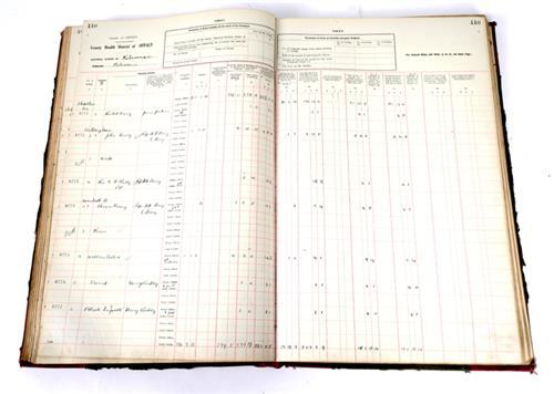 1927-28 County Offaly Rate Book.
