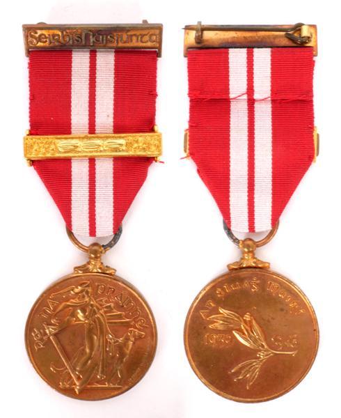 1939-46 Emergency National Service medal, An Sluigh Muirí, with one bar.