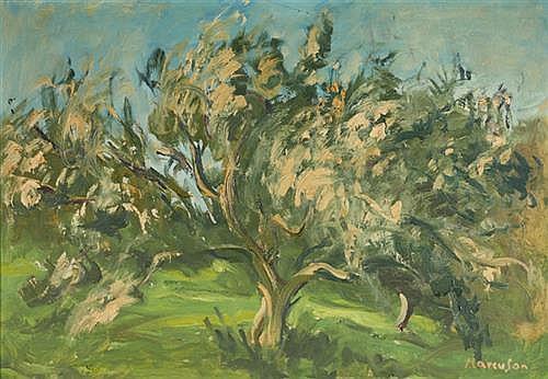Lawrence Marcuson (b.1933) OLIVES, KFAR HANASSI, ISRAEL