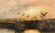 Andrew Nicholl RHA (1804-1886) MALLARDS IN FLIGHT