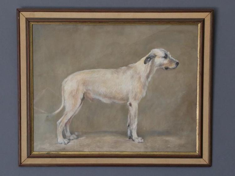 Pastel Portrait of an Irish Wolfhound