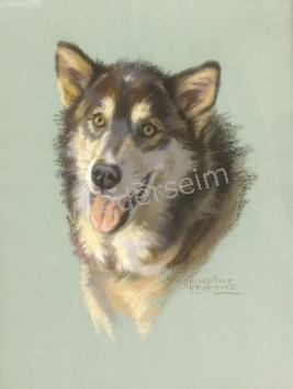 Portrait of a Husky by Josephine Crumine Liddell