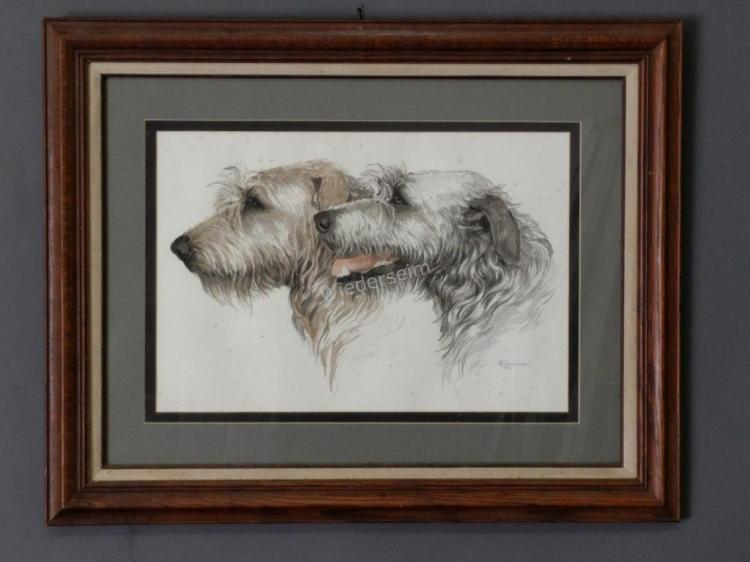 Watercolor of Irish Wolfhounds by Martha Van Loan