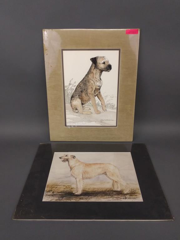 Watercolor of Irish Wolfhound by Martha Van Loan