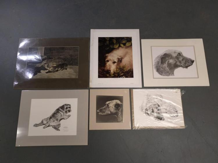 Six Mostly Irish Wolfhound Prints